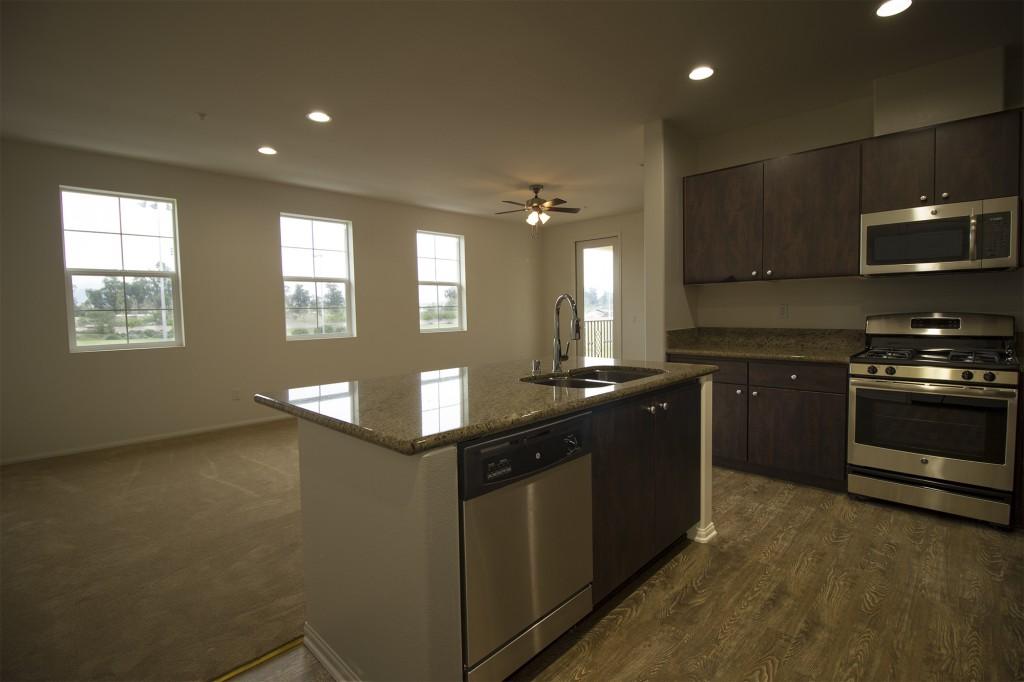 apt kitchen living room